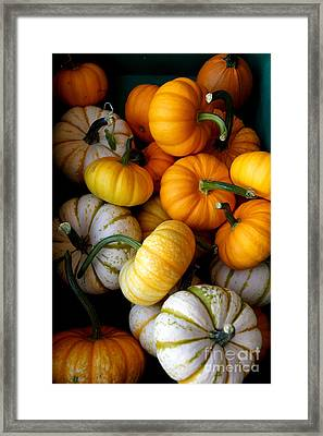 Cinderella Pumpkin Pile Framed Print by Kerri Mortenson