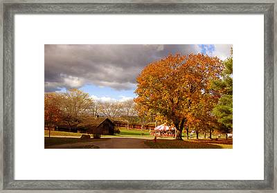 Circus Barn And Carousel Framed Print by William Alexander