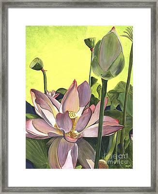 Citron Lotus 2 Framed Print by Debbie DeWitt
