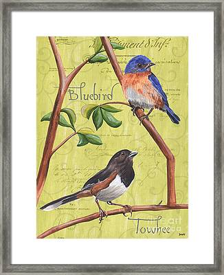 Citron Songbirds 1 Framed Print by Debbie DeWitt