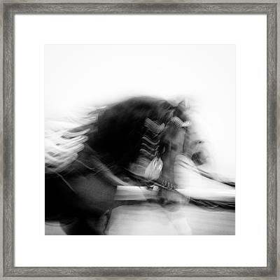 City Horses Framed Print by Dave Bowman
