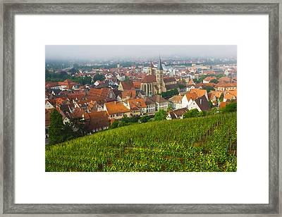City Viewed From Vineyard Framed Print by Panoramic Images