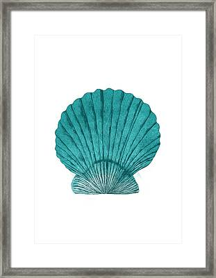 Clam Framed Print by Randoms Print