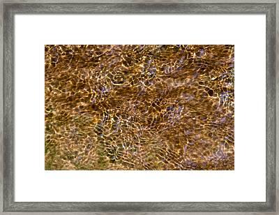 Clean Stream 3 - Featured 3 Framed Print by Alexander Senin