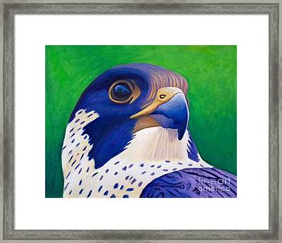 Clear Light Framed Print by Brian  Commerford