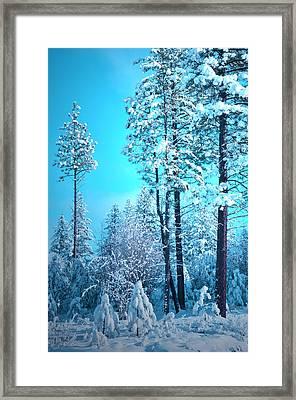Clear Skies And Snow Framed Print by Tara Turner