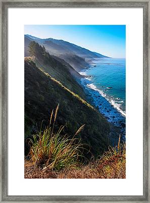 Cliff Grass At Big Sur Framed Print by Adam Pender