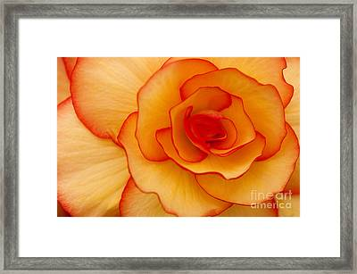 Close To Saturn Framed Print by Anne Gilbert