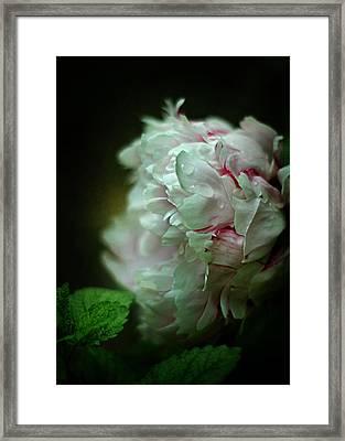 Cloud Shrouded Beauty Framed Print by Rebecca Sherman