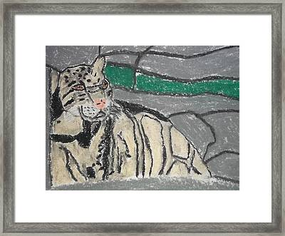 Clouded Leopard Pastel On Paper Framed Print by William Sahir House