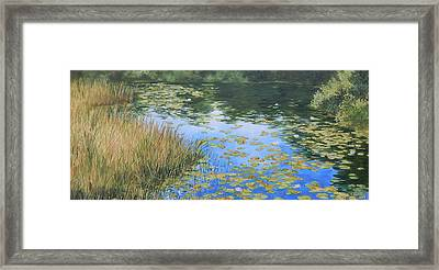 Clouds In The Pond Framed Print by Anna Lowther