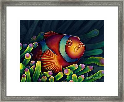 Clown Fish Framed Print by Scott Spillman