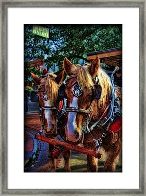 Clydesdales - Want A Ride Framed Print by Lee Dos Santos