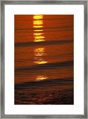 Coastal Abstract Framed Print by Karol Livote