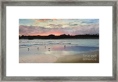 Coastal Beauty Framed Print by Betty LaRue