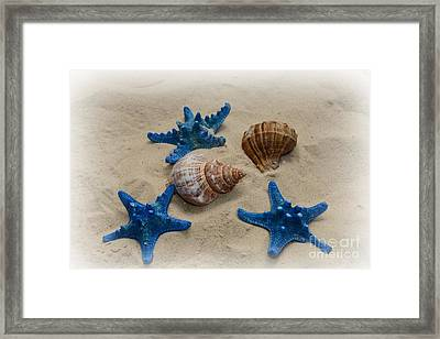 Coastal Dreams Framed Print by Paul Ward