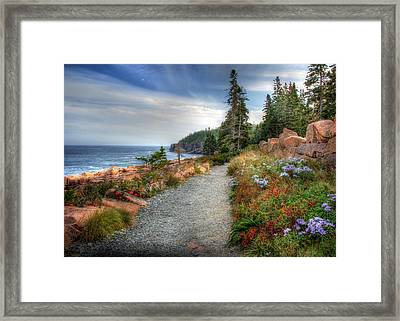 Coastal Meandering Framed Print by Lori Deiter