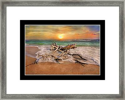 Coastal Morning  Framed Print by Betsy Knapp
