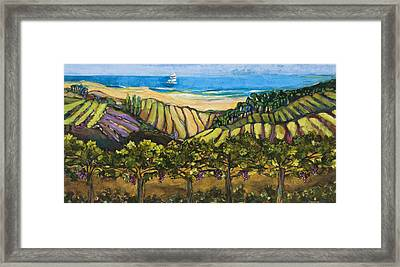 California Coastal Vineyards And Sail Boat Framed Print by Jen Norton