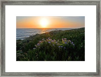 Coastal Sunset Framed Print by Lynn Bauer