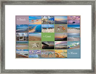 Coastal Winds Framed Print by Betsy C Knapp