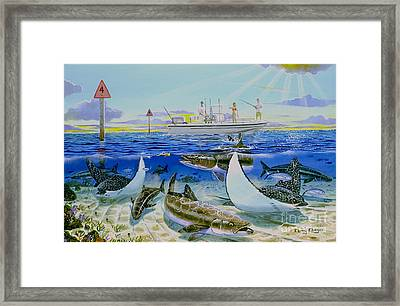 Cobia Run In004 Framed Print by Carey Chen
