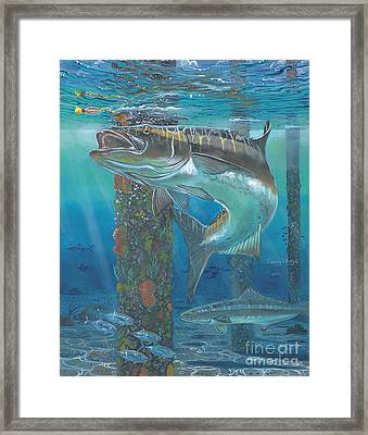 Cobia Strike In0024 Framed Print by Carey Chen