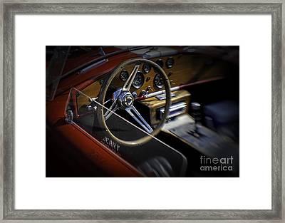 Cobra Framed Print by Fred Lassmann