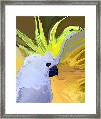 Cockatoo Framed Print by Chris Butler