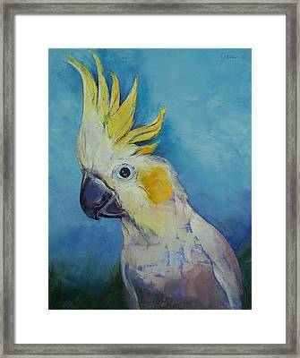 Cockatoo Framed Print by Michael Creese
