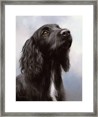 Cocker Spaniel Painting Framed Print by Rachel Stribbling