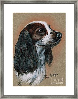 Cocker Spaniel Framed Print by Val Stokes
