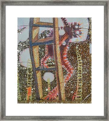 Coco T Framed Print by Nancy Mauerman