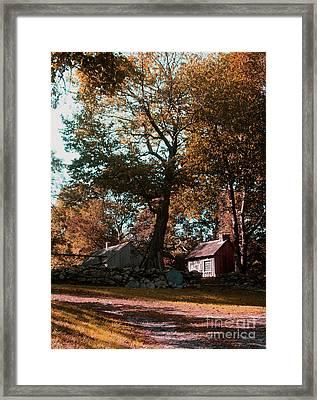 Coggeshall Farm Bristol Ri Framed Print by Tom Prendergast