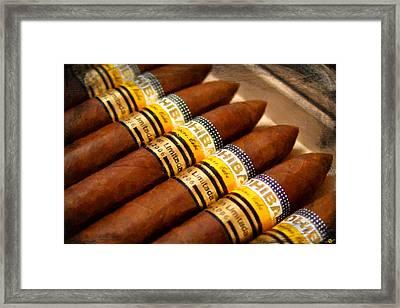 Cohiba Cigar Painting Framed Print by Tony Rubino