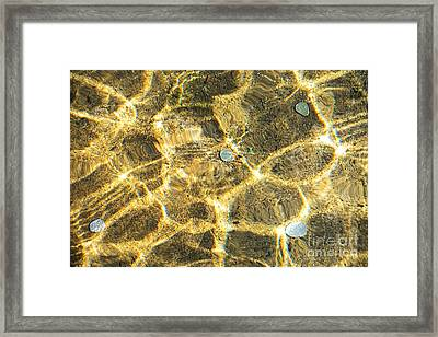 Coins In The Fountain By Kaye Menner Framed Print by Kaye Menner