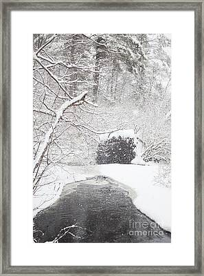 Cold Comfort Framed Print by Sue OConnor