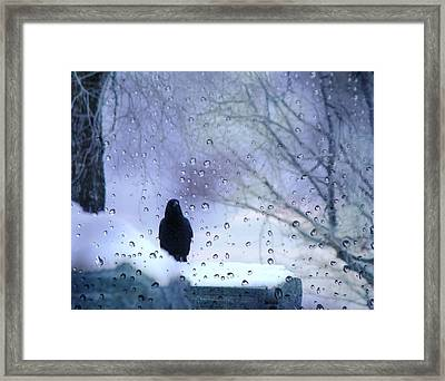 Cold Crow Framed Print by Gothicolors Donna Snyder