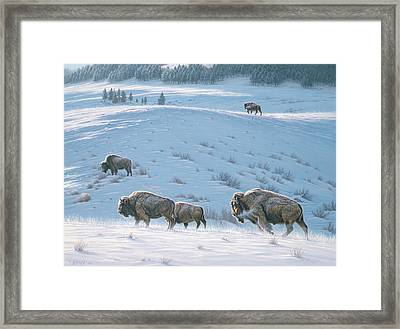 Cold Day At Lamar Framed Print by Paul Krapf