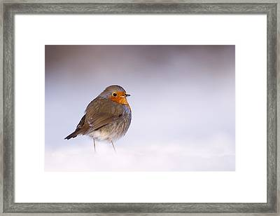 Cold Feet Framed Print by Roeselien Raimond