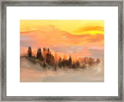 Cold Foggy Spring Morning Framed Print by Angela A Stanton