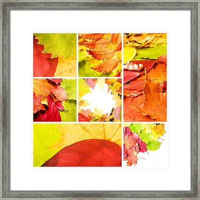Collage Colorful Framed Print by Boon Mee