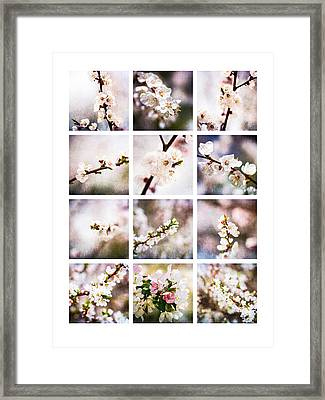 Collage Mysteries Of Spring Framed Print by Alexander Senin