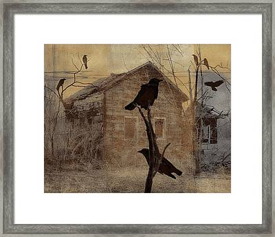 Collage Of 7 Crows Framed Print by Gothicolors Donna Snyder