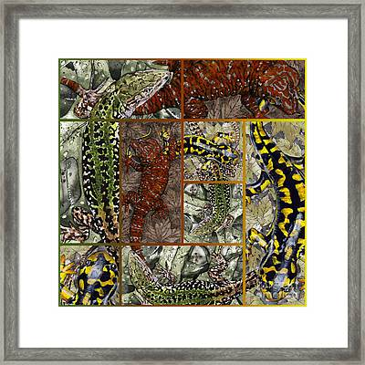 Collage Of My Acrylic Painting Inspired By Escher - Elena Yakubovich Framed Print by Elena Yakubovich