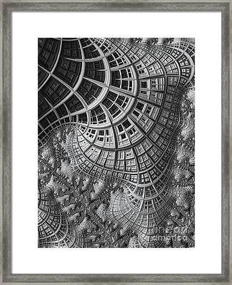 Colony II Framed Print by John Edwards