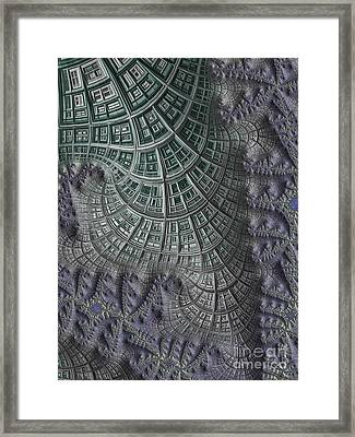 Colony Framed Print by John Edwards