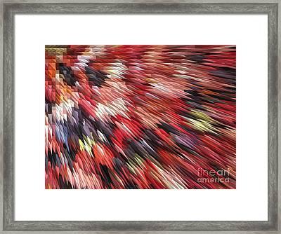 Color Explosion #01 Framed Print by Ausra Huntington nee Paulauskaite