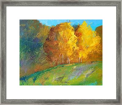 Color Framed Print by Nancy Merkle