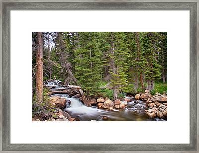 Colorado Rocky Mountain Forest Stream Framed Print by James BO  Insogna